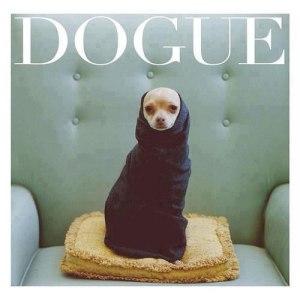 file_179909_0_Dogue