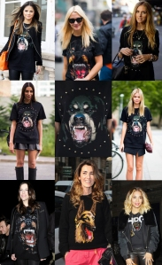 t-shirt-dog